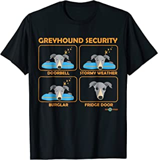 greyhound security