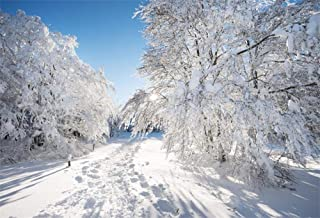 Best snow nature background Reviews