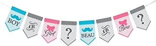 Lillian Rose Baby Gender Reveal Bunting Banner, Pink/Blue/Grey, 45