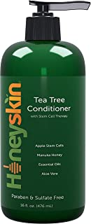 Organic Tea Tree Oil Conditioner - Hydrating Conditioner for Dandruff Hair Loss Itchy and Dry Damaged Scalp Treatment - Paraben and Sulfate Free - with Manuka Honey Coconut Oil and Stem Cells – 16oz