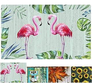 Flamingo Door Mat Indoor Entry Way Doormat for Front Door Patio Anti Slip Rubber Entrance Door Mats Summer Door Mat