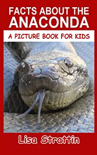 Anaconda: Fun Facts About the Anaconda Snake (A Picture Book For Kids 11)