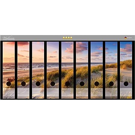 passend f/ür 9 breite Ordnerr/ücken Gr/ö/ße 54 x 30 cm Wallario Ordnerr/ücken Sticker Fliegende M/öwe am Strand in Premiumqualit/ät