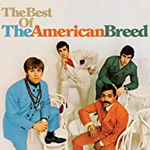 Best the american breed Reviews
