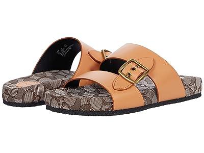 COACH Buckle Sandal
