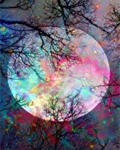 5D Diamond Painting by Number Kit, Bright Moon Full Drill Embroidery Cross Stitch Picture..
