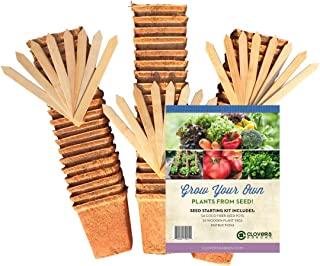 54 Coco Fiber Seed Starter Biodegradable Pots for Starting Tender Rooted Vegetables, Herbs, Plant Seedlings, Cuttings, Germination Transplanting - Includes 24 Wooden 6