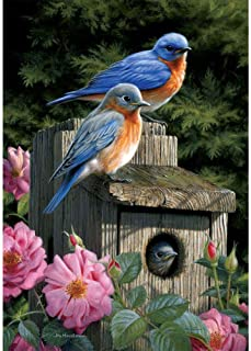 Custom Decor Bluebird House - Standard Size, Decorative Double Sided, Licensed and Copyrighted Flag - Printed in The USA Inc. - 28 Inch X 40 Inch Approx. Size