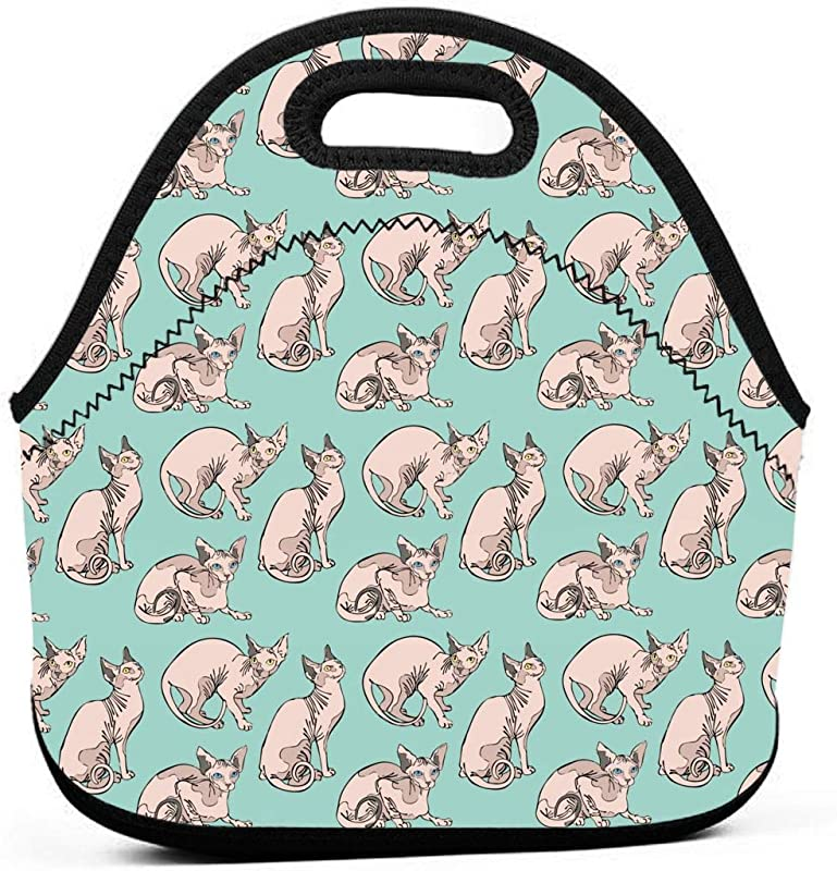 ONUPMIN Neoprene Hairless Naked Cats Sphynx Cats Pattern Mint Green Portable Lunch Bag Carry Case Tote With Zipper Strap Box Container Bags Picnic Outdoor Travel Handbag Pouch For Women Men