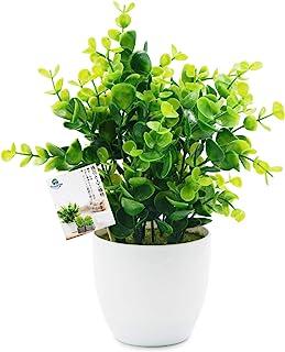 TOSSOW 人工観葉植物 フェイクグリーン 観葉植物 フェイク 造花 ミニ インテリア 世話のいらない 可愛い贈り物 グリーンユーカリ