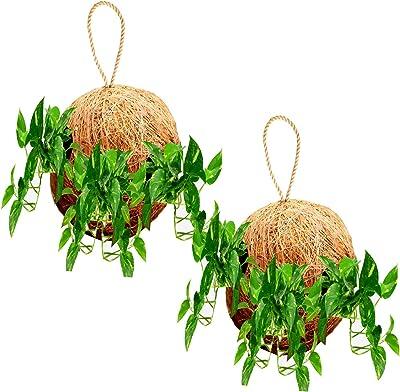 LIVEONCE Round Ball Coir Made Planter Hanging Set of 2 Used AS Railing planters,Hanging planters,Poly Grow Bags,Plant Stands,Plastic pots,Desk pots,Clay pots,Ceramic pots
