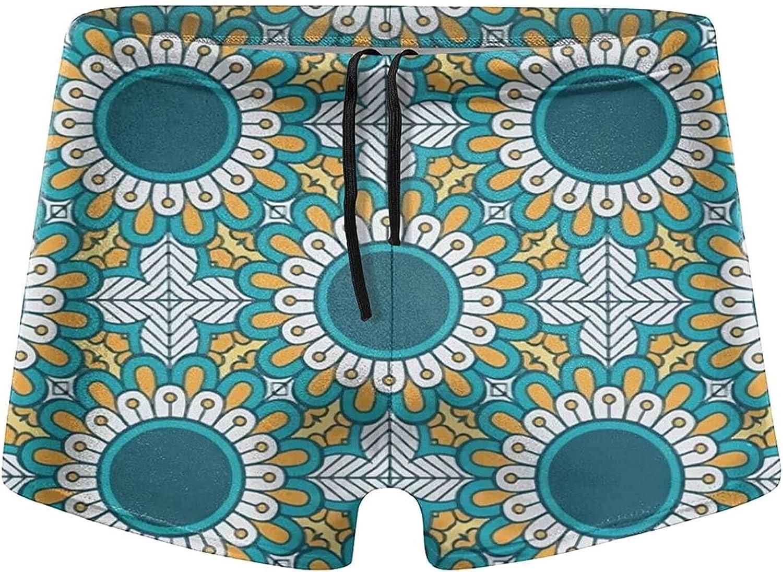 Mens Swim Brief Kitchen Fruits Square Leg Swimsuit with Adjustable Drawstring Comfy Swim Boxer S