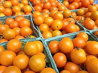 Portal Cool 50Pcs: 20/50Pcs Sweet Papaya Seeds Tropic Organic Fruit Seeds Plant Garden B98B 01