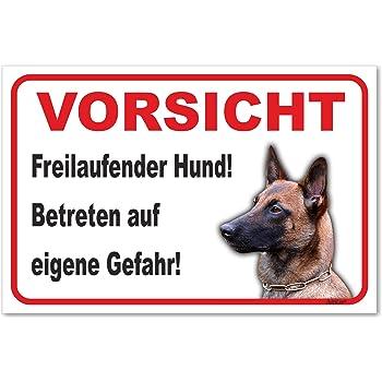 Echtes Edelstahl Hinweis-Schild T/ürschild Gr/ö/ße 12x8 oder 15x10 cm Achtung Hund Sch/äferhund selbstklebend oder mit Bohrl/öcher Betreten auf eigene Gefahr Hundeschild Modell M11