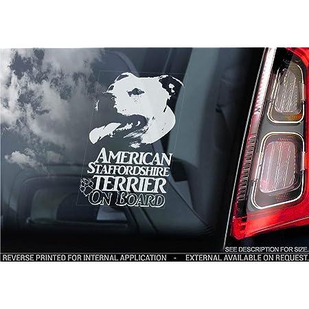 American Staffordshire Terrier Autoaufkleber Hund Schild Fenster Stoßstange Aufkleber Geschenk V014 Weiß Klar Interne Rückwärtsgang Aufdruck 155x100mm Küche Haushalt