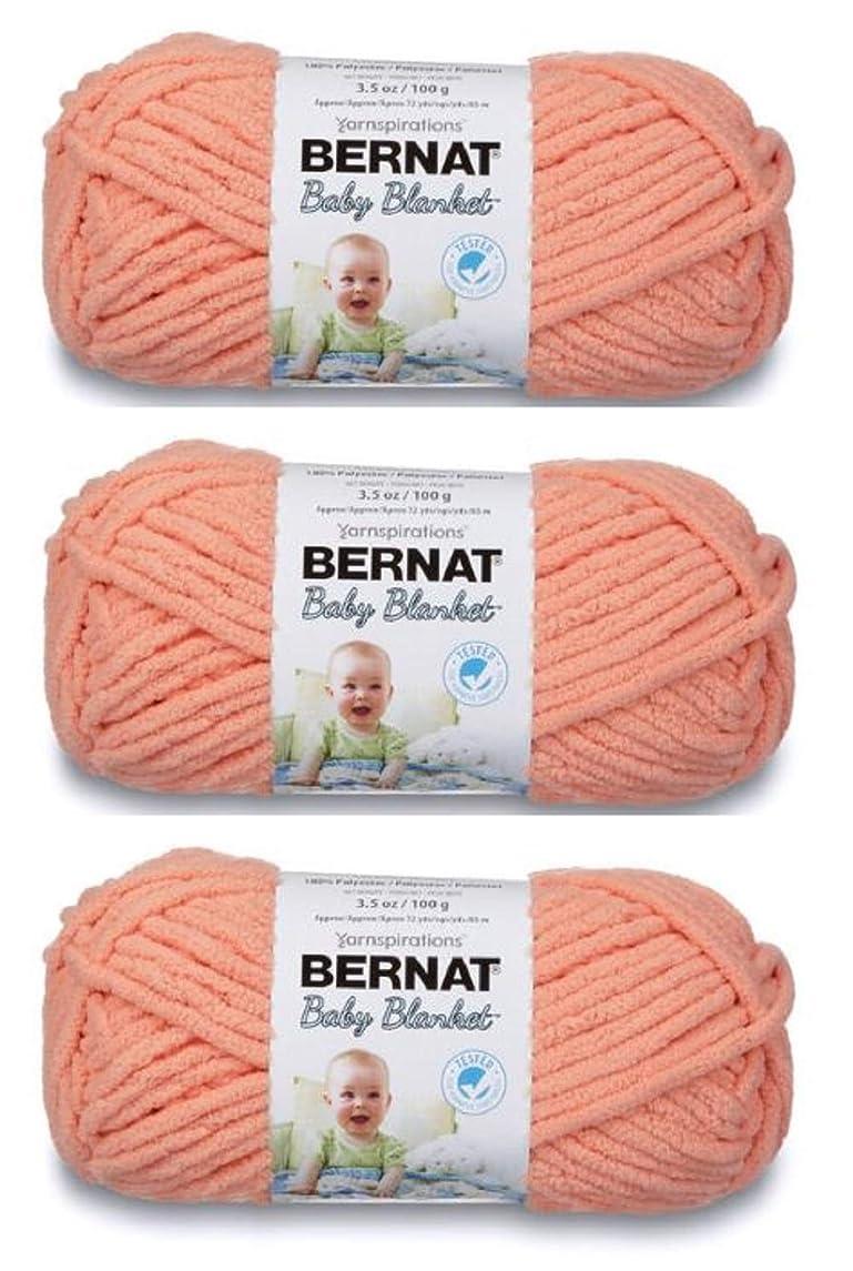 Bulk Buy: Bernat Baby Blanket Yarn (3-Pack) Baby Peach 161103-3512
