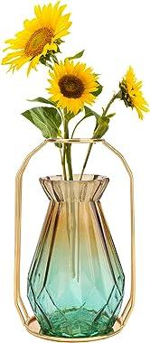 Vase à fleurs avec cadre en métal, 3 couleurs au choix Vases en verre pour de fleurs artificielles Vase à fleurs moderne pour
