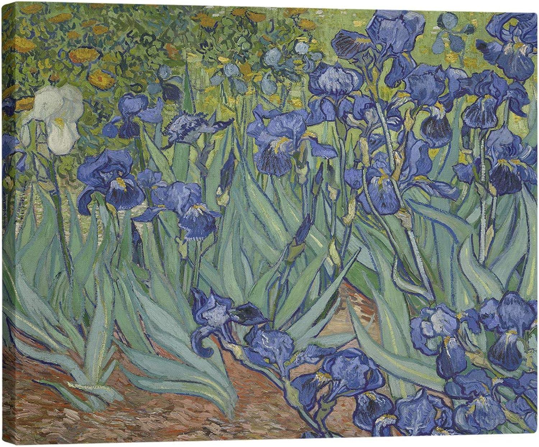 ArtVerse VAN002MCS1624 Van Gogh Semi Gloss Canvas Stretched, Green & purple, 16 X 24
