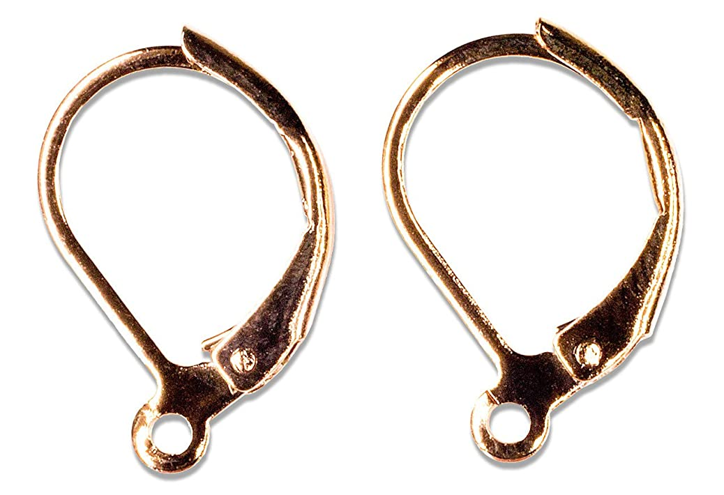 Cousin Jewelry Basics 9 by 16mm Euro Lever Earring, Rose Gold, 2-Piece hnjkrhkber
