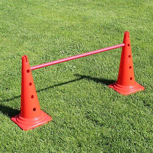 Superhund24 Kombi-Kegelhürde 50 in rot, mit Stange 100 cm, für Agility-Training (rot)