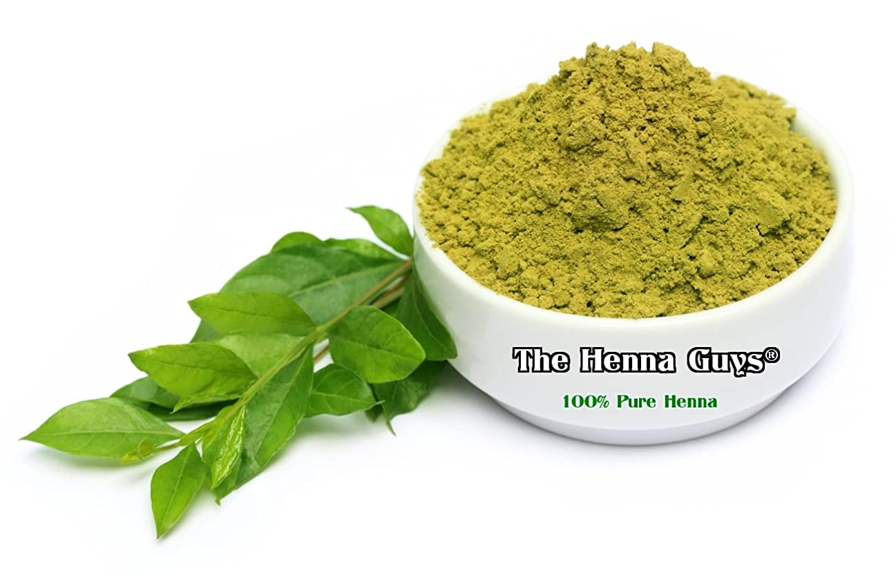 とげのある味わうあざ染毛剤用ヘンナパウダー - ヘナガイズ?(100g)