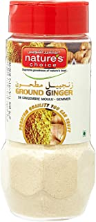 Natures Choice Ginger Powder - 100 gm