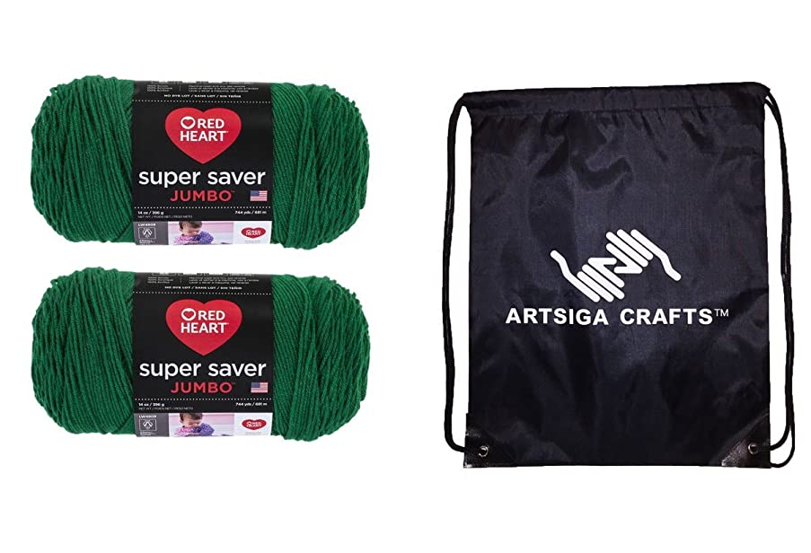 Red Heart Super Saver Jumbo Knitting Yarn Paddy Green 2-Skein Factory Pack (Same Dyelot) E302C-0368 Bundle with 1 Artsiga Crafts Project Bag