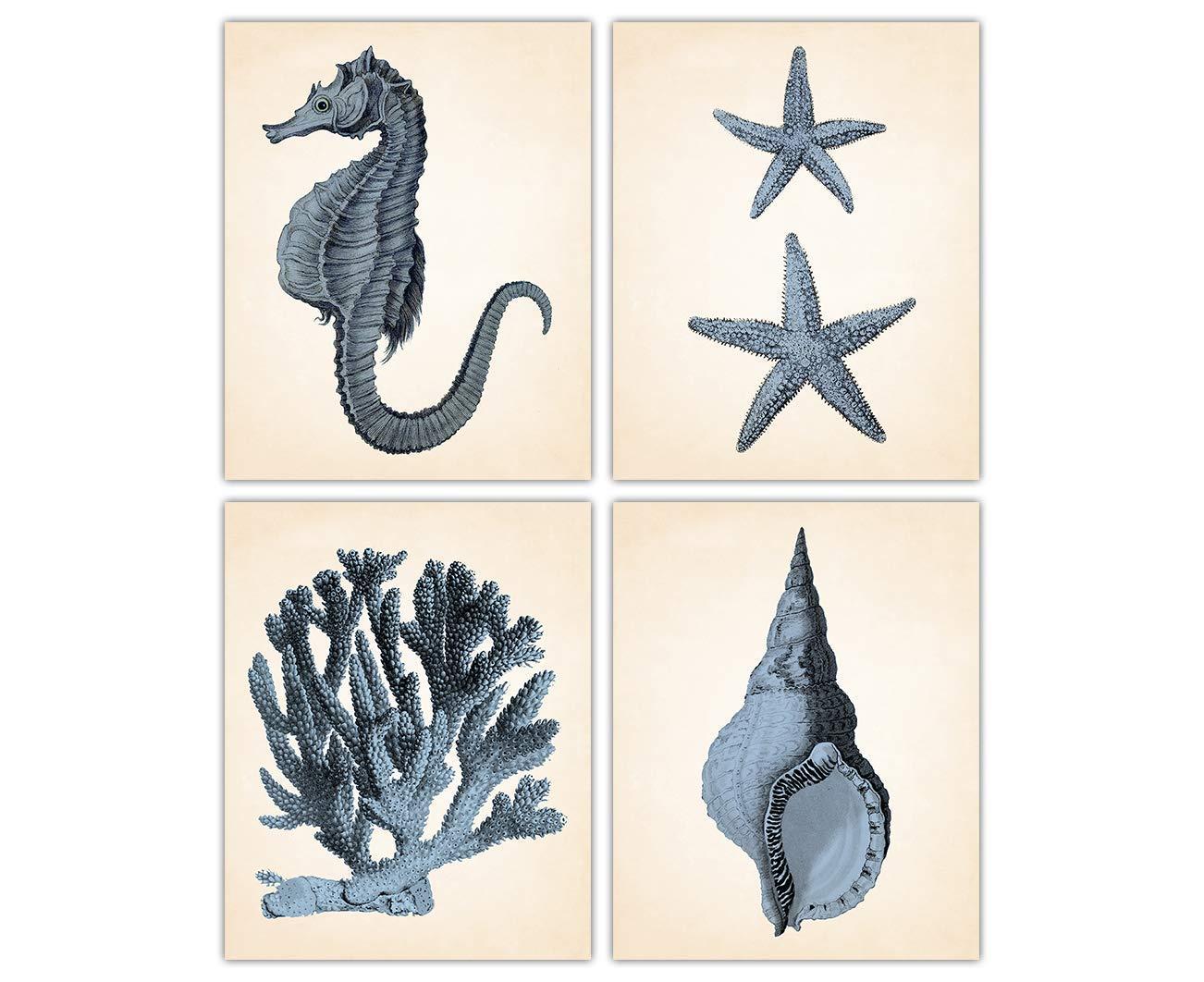 supreme Memphis Mall Vintage Coral Seahorse Shell Starfish Wall Prints - Art Set