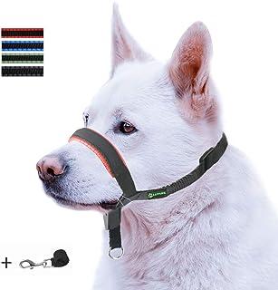 ILEPARK Correa de Adiestramiento para Perros de Piel Acolchado - Confortable al Tacto, el Collar para Perros Frena los Tirones y Deja de Tirar, Ajustable, Herramienta de Entrenamiento (M,Rojo)