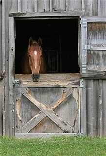 LFEEY 5x7ft Farm Grassland Barn Door Backdrop Wooden Horse Stable Saloon Gate Doorway Western Back Drop Background Portrait Travel Photography Studio Props