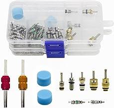 Magiin 108 Pcs AC R134A R12 Núcleos Válvulas Accesorios Tapa de Sistema de Aire Acondicionado Coche Con Llave Removedor de Doble Cabeza de Núcleo Válvula en 2 Cajas
