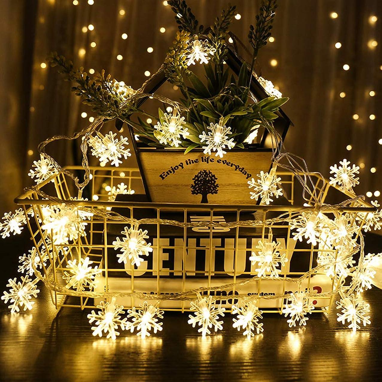 ウォーターフロントライラック種類TINKSKY ワイヤーライト イルミネーションライト 雪型 銅線ライト 電池式 クリスマス飾り パーティ/結婚式 電飾 (5m50電球)