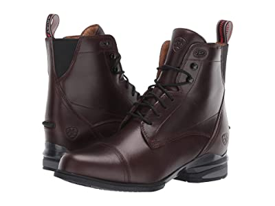 Ariat Performer Nitro Paddock (Waxed Chocolate) Women