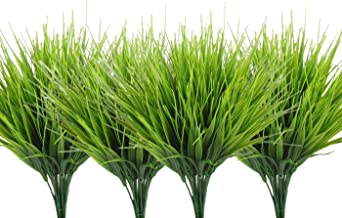Best tall grass that looks like wheat Reviews
