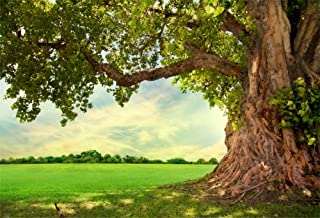 Best oak tree white background Reviews