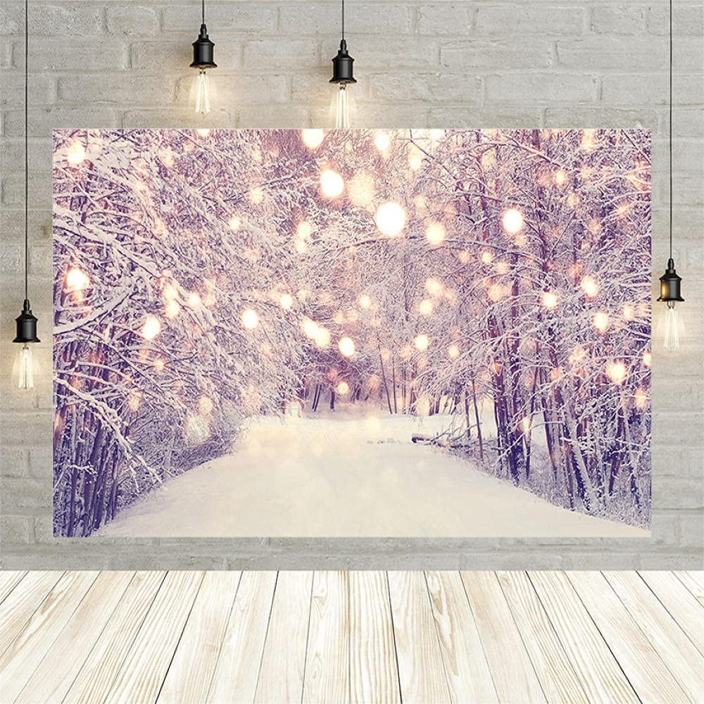 Photo Backgrounds Background for Photography Outlet Max 59% OFF sale feature Way Christmas Wonde