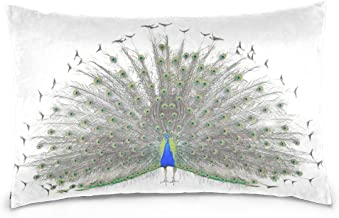 Top Carpenter Beautiful Male Peacock Velvet Oblong Lumbar Plush Throw Pillow Cover/Shams Cushion Case - 16x24in - Decorative Invisible Zipper Design for Couch Sofa Pillowcase Only
