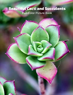 Beautiful Cacti and Succulents Full-Color Picture Book: Flower Picture Book for Children, Seniors and Alzheimer's Patients...