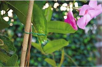 Amazon.es: alambre plastificado
