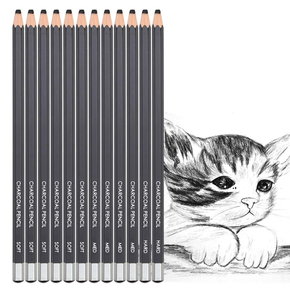 Charcoal Drawing Pencils Sketching Beginners