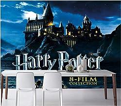 Harry Potter Behang, Castle Tapestry Photo, for De Decoratie Van De Woonkamer Slaapkamer (Color : 2, Size : 300 * 210cm)