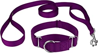 Country Brook Design - Martingale Heavy Duty Nylon Dog Collar and Double Handle Leash Set