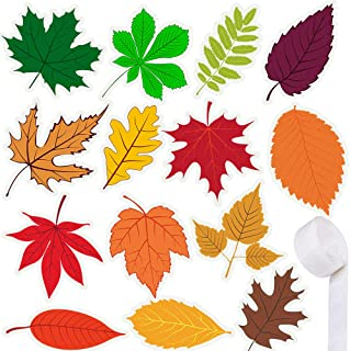 Best leaf cut out Reviews