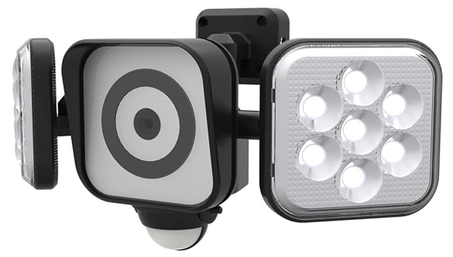 誰でもアラスカドラフトムサシ RITEX フリーアーム式LEDセンサーライト防犯カメラ(8W×2灯) 防雨型 C-AC8160