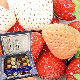 いちご 三色いちご(パールホワイト・淡雪・古都華) 約270g×2パック 奈良いちごラボ 奈良県