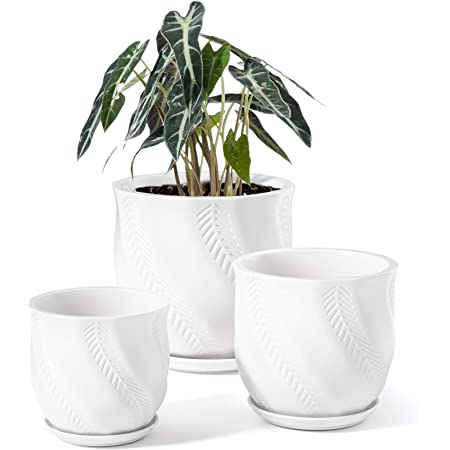 Le Tauci Plant Pots With Drainage Holes And Saucers 4 7 Inch Aloe Plant Pot Small Flower Pot Ceramic Pots For Plants For Succulent Cactus Indoor Planter Set Of 2 Turquoise Garden