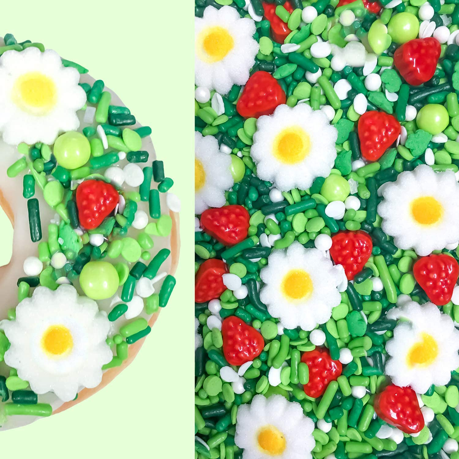 Greenery Bright Daisies and Free shipping anywhere in the nation Ranking TOP3 Sugars Strawberries Sprinkles Confet