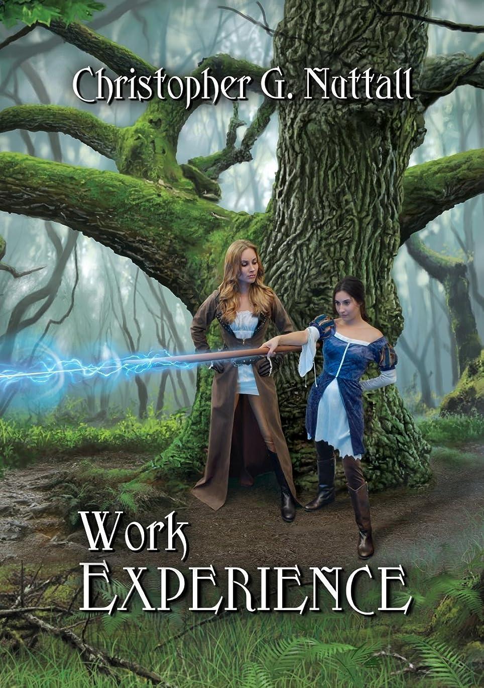 浸すダンプ理論Work Experience (Schooled in Magic Book 4) (English Edition)