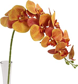 Ivalue Artificial Orchid Stems Phalaenopsis Flowers Pack of 4 for Home Decoration 3D Printed Orchid Flowers (38