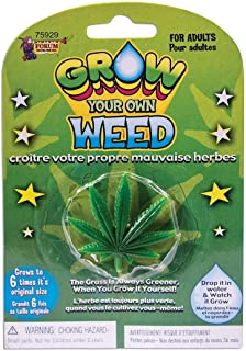 """Forum Novelties Grow Your Own Weed Plant Leaf 7 x 4.5 x 8"""""""